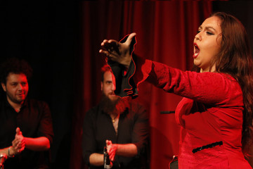 flamenco-de-club-en-el-berlín